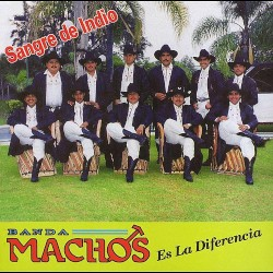 Banda Machos - La secretaria