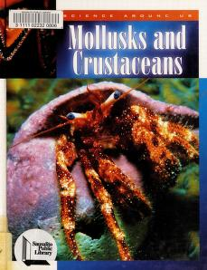 Cover of: Mollusks and crustaceans | Murray, Peter